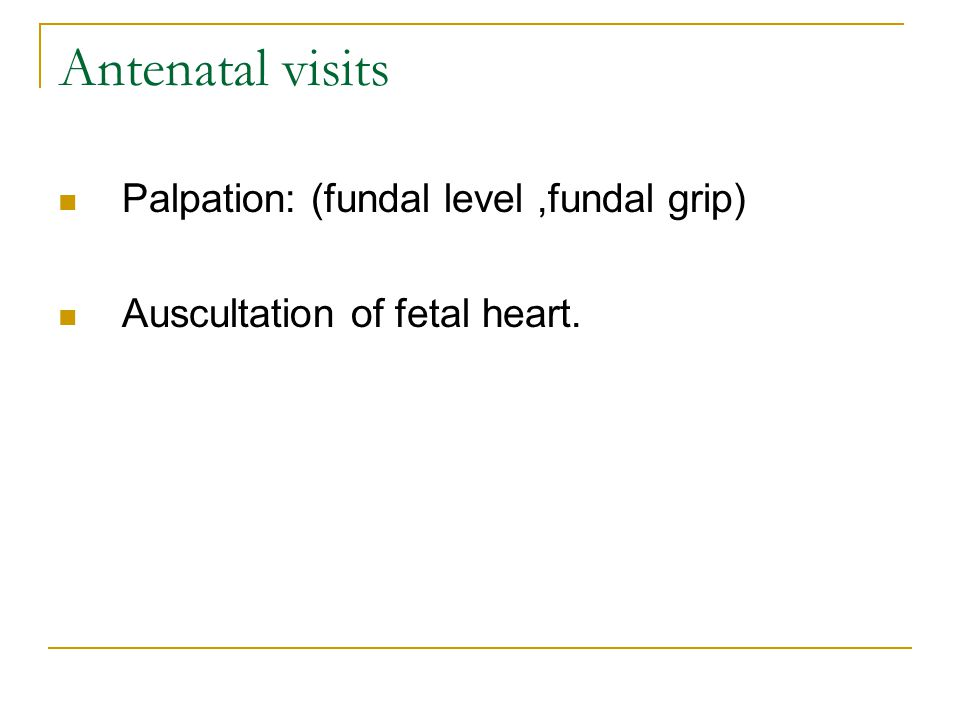 Antenatal visits Palpation: (fundal level ,fundal grip)