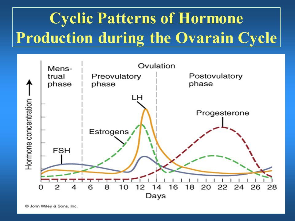 Cyclic Patterns of Hormone Production during the Ovarain Cycle