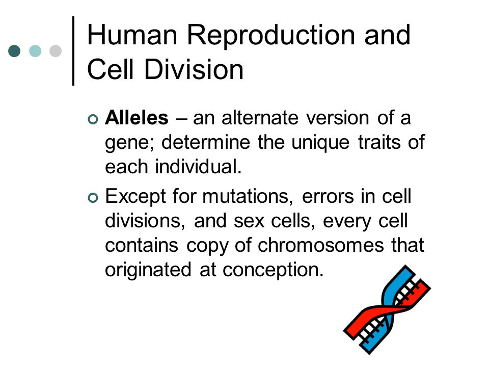 Human Reproduction and Cell Division