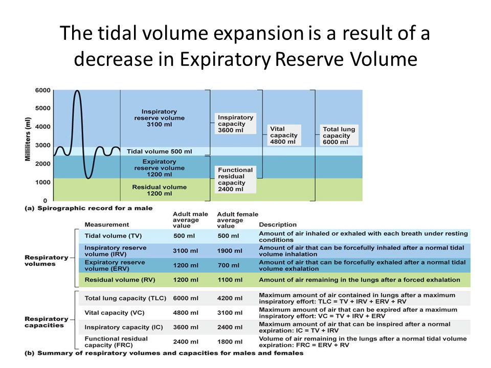 The tidal volume expansion is a result of a decrease in Expiratory Reserve Volume