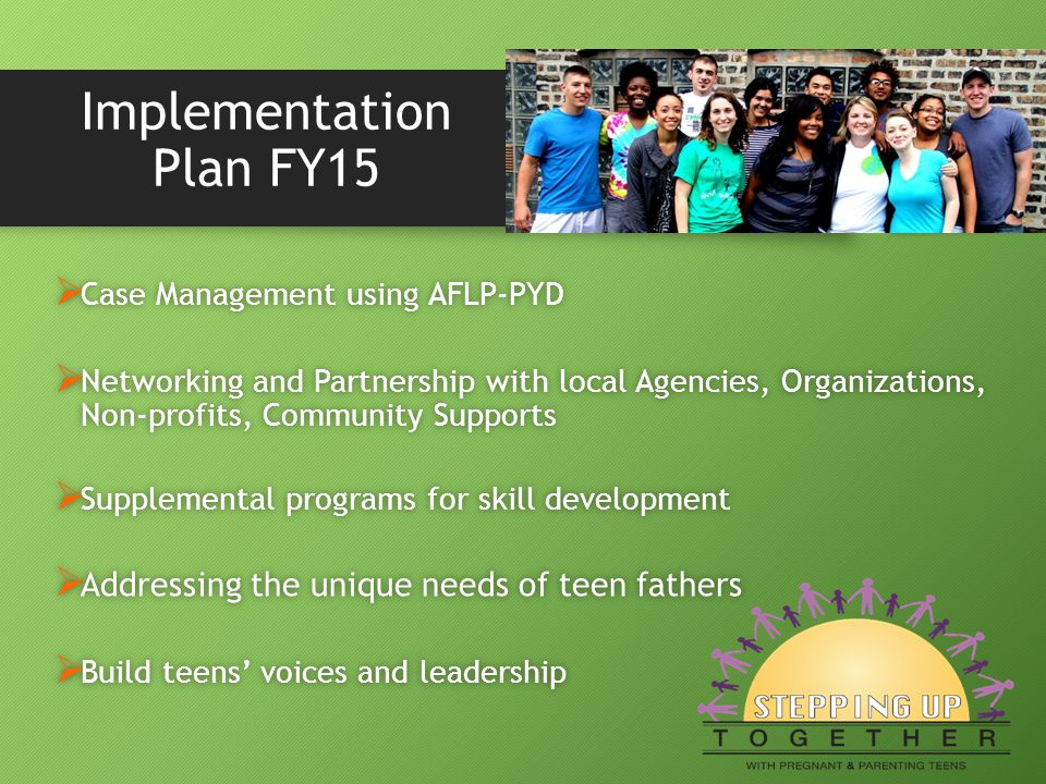 Implementation Plan FY15