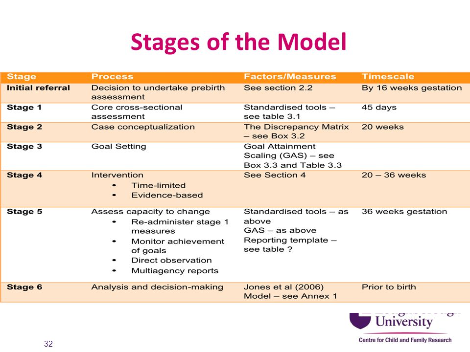 Stages of the Model