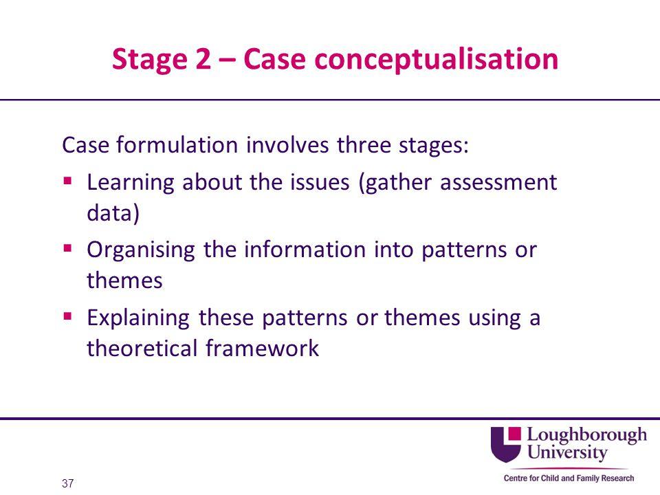 Stage 2 – Case conceptualisation