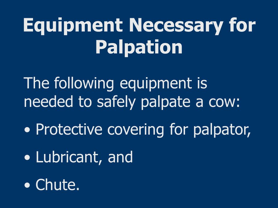 Equipment Necessary for Palpation