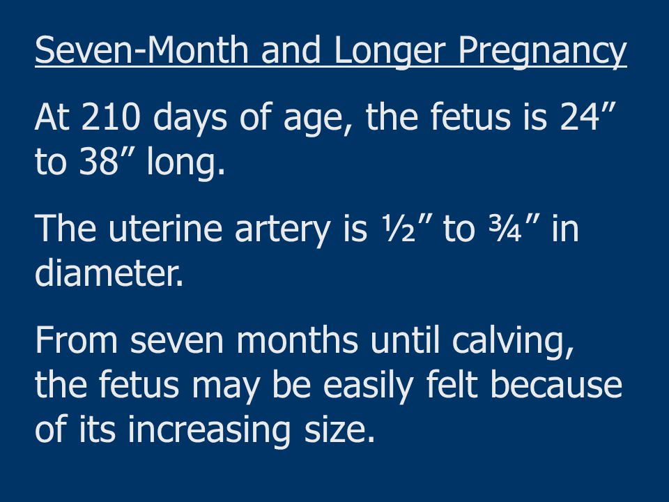 Seven-Month and Longer Pregnancy