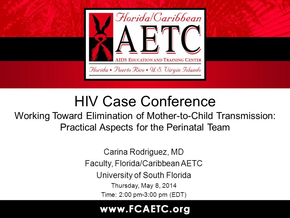 HIV Case Conference Working Toward Elimination of Mother-to-Child Transmission: Practical Aspects for the Perinatal Team