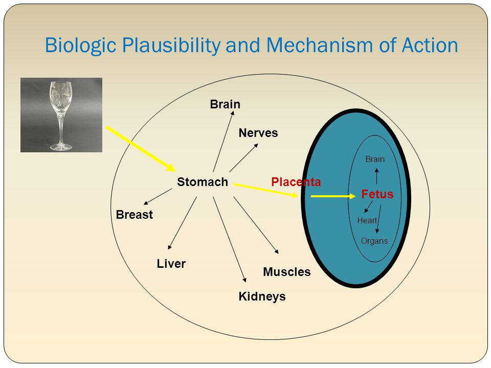 Biologic Plausibility and Mechanism of Action