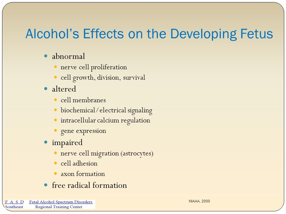 Alcohol's Effects on the Developing Fetus