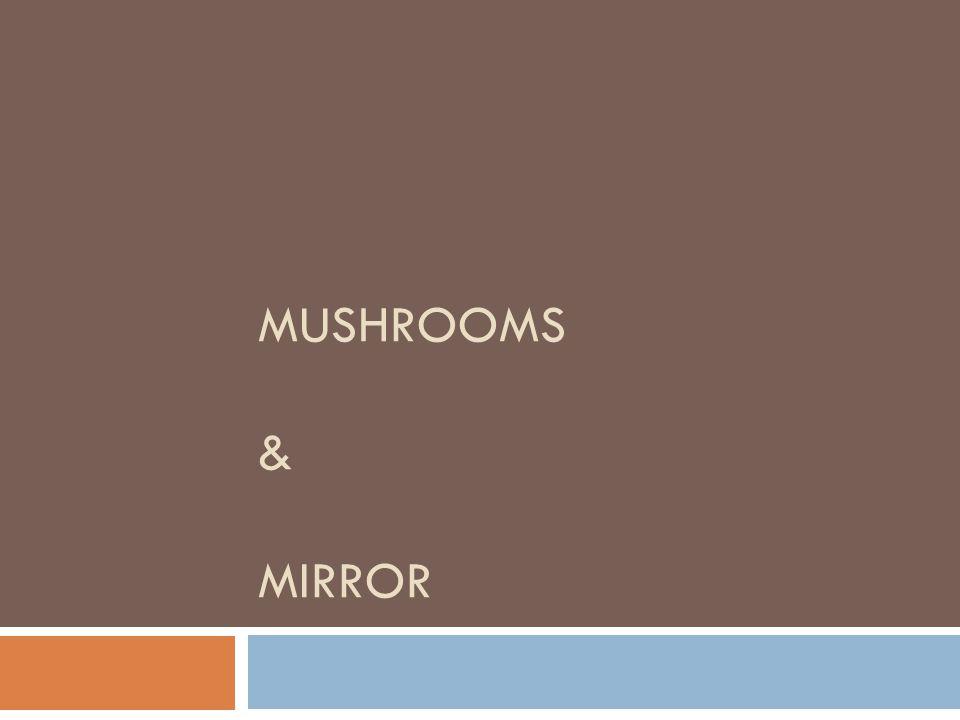 Mushrooms & Mirror