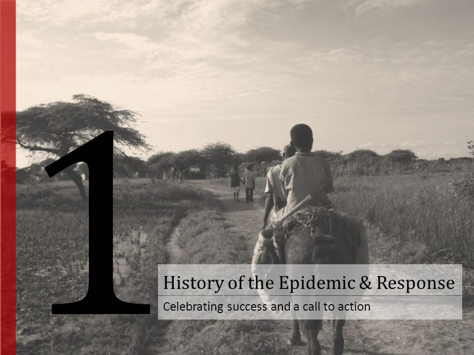 History of the Epidemic & Response