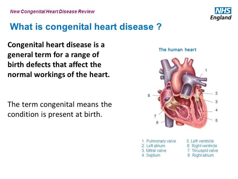 What is congenital heart disease
