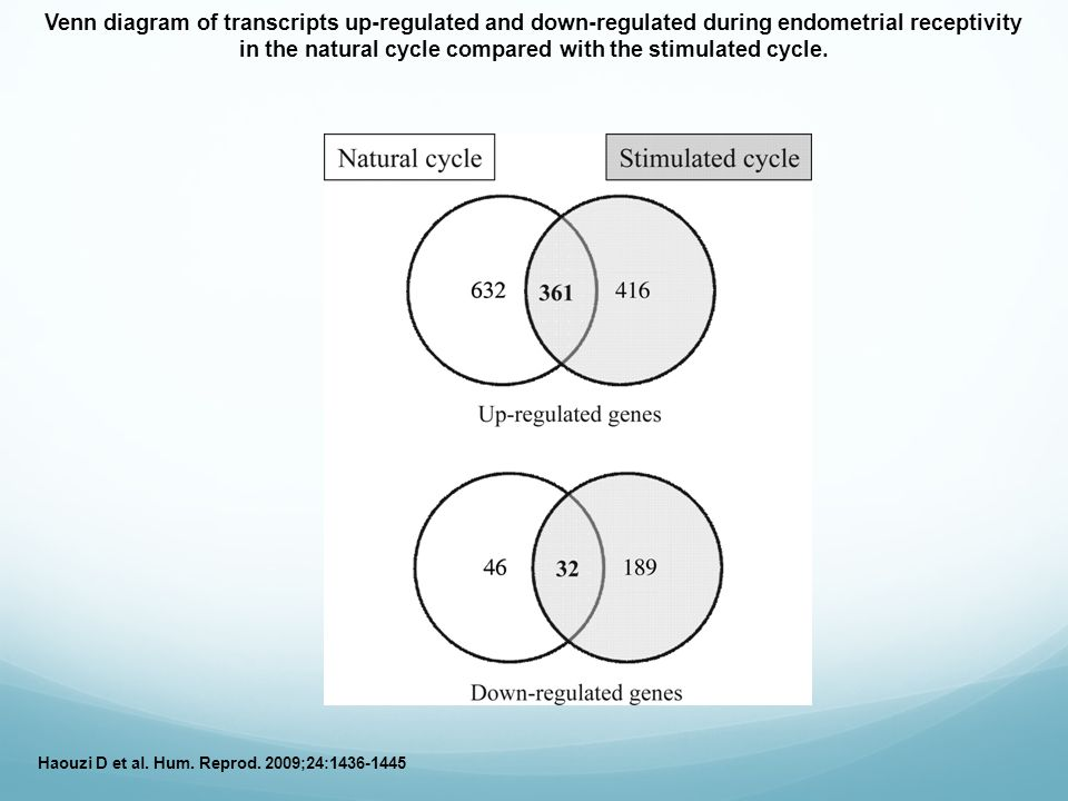 Venn diagram of transcripts up-regulated and down-regulated during endometrial receptivity in the natural cycle compared with the stimulated cycle.
