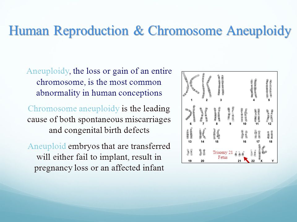Human Reproduction & Chromosome Aneuploidy