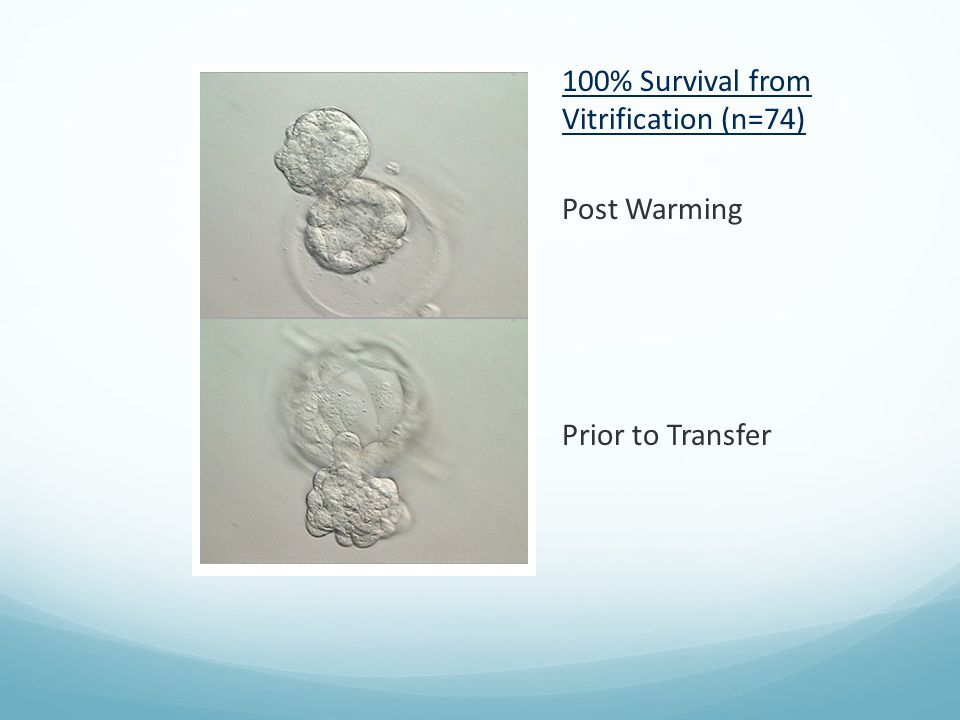 100% Survival from Vitrification (n=74)