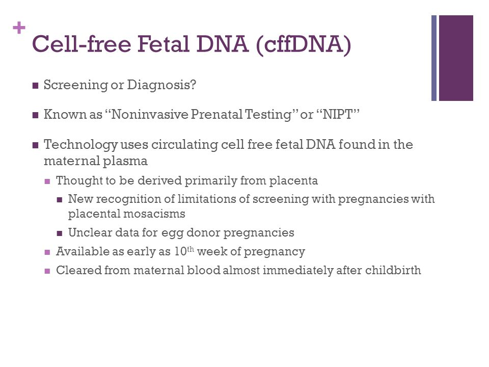 Cell-free Fetal DNA (cffDNA)