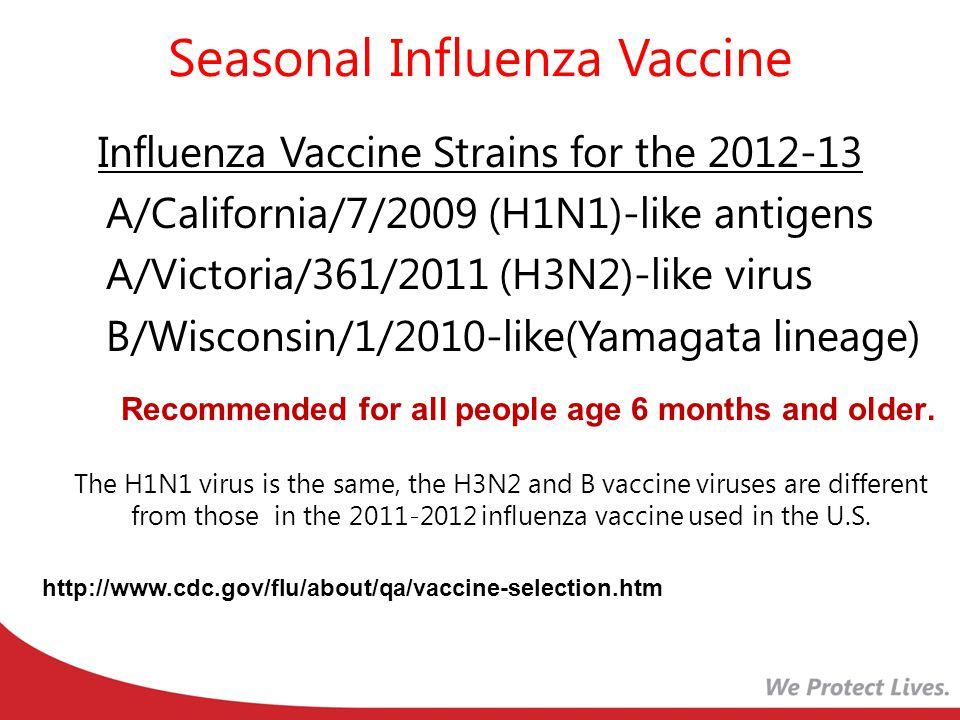 Seasonal Influenza Vaccine