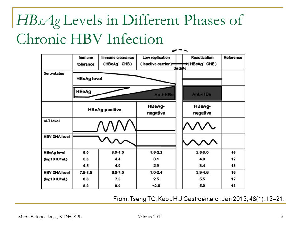 HBsAg Levels in Different Phases of Chronic HBV Infection