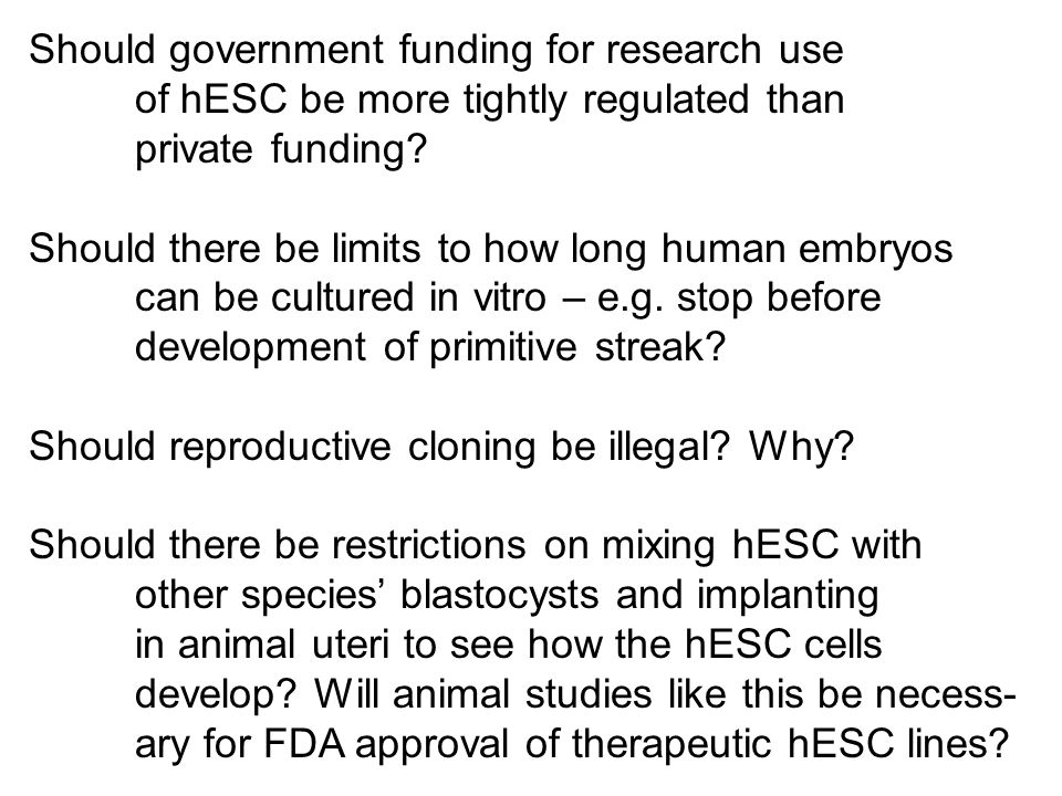 Should government funding for research use
