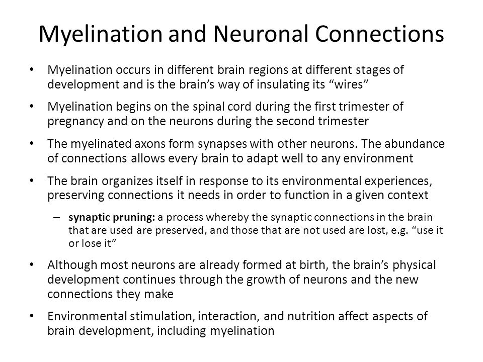 Myelination and Neuronal Connections