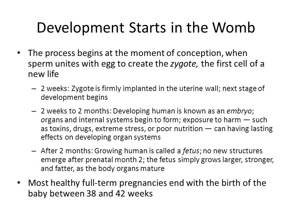 Development Starts in the Womb