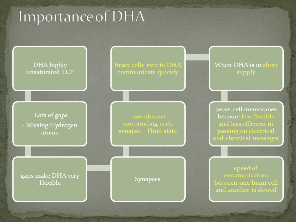 Importance of DHA DHA highly unsaturated LCP. - Missing Hydrogen atoms. -Lots of gaps. gaps make DHA very flexible.