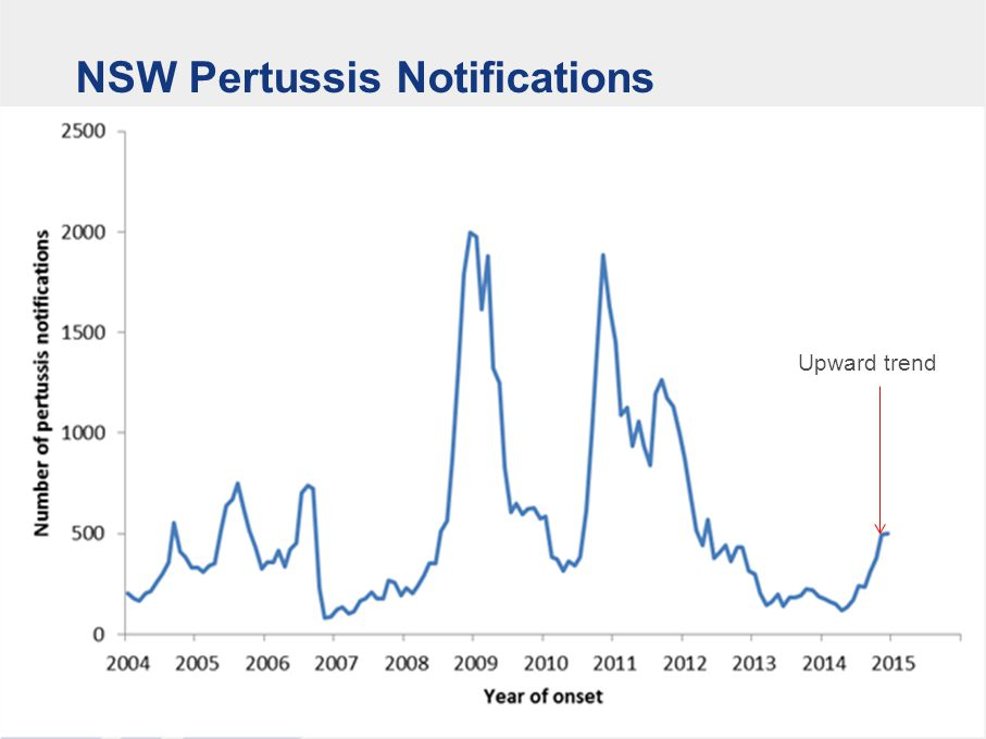 Pertussis notifications in NSW by age group 1 July 2014 to 31 December 2014