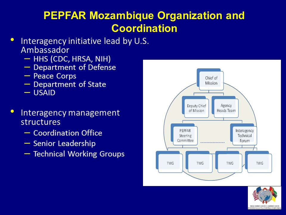 PEPFAR Mozambique Organization and Coordination