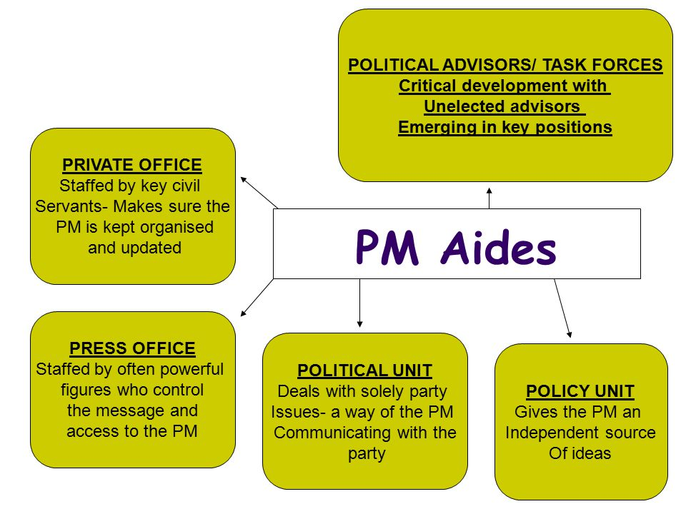 PM Aides POLITICAL ADVISORS/ TASK FORCES Critical development with