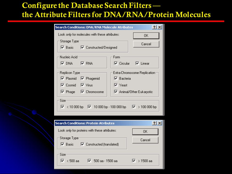 Configure the Database Search Filters — the Attribute Filters for DNA/RNA/Protein Molecules