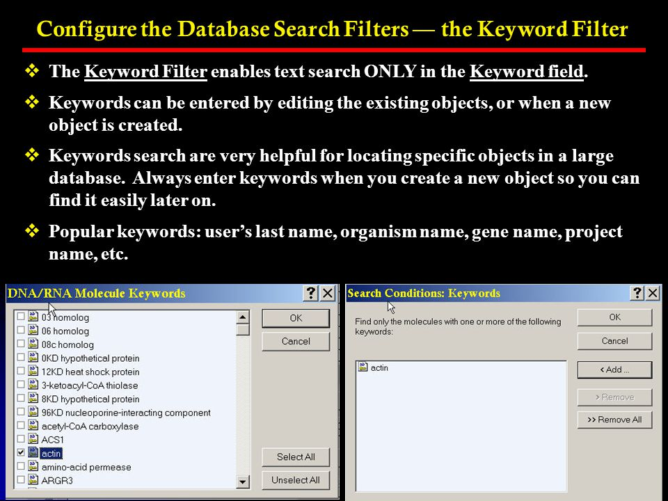 Configure the Database Search Filters — the Keyword Filter
