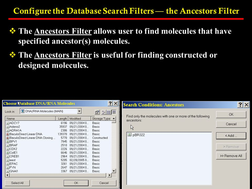 Configure the Database Search Filters — the Ancestors Filter