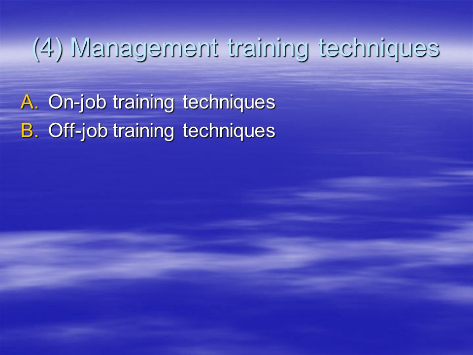 (4) Management training techniques