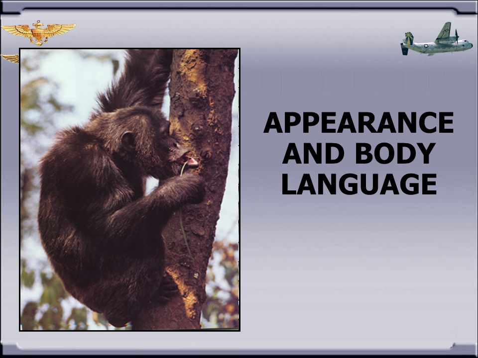 APPEARANCE AND BODY LANGUAGE