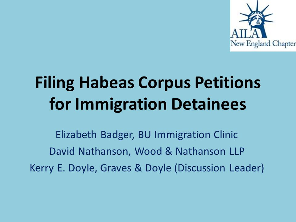 Filing Habeas Corpus Petitions for Immigration Detainees