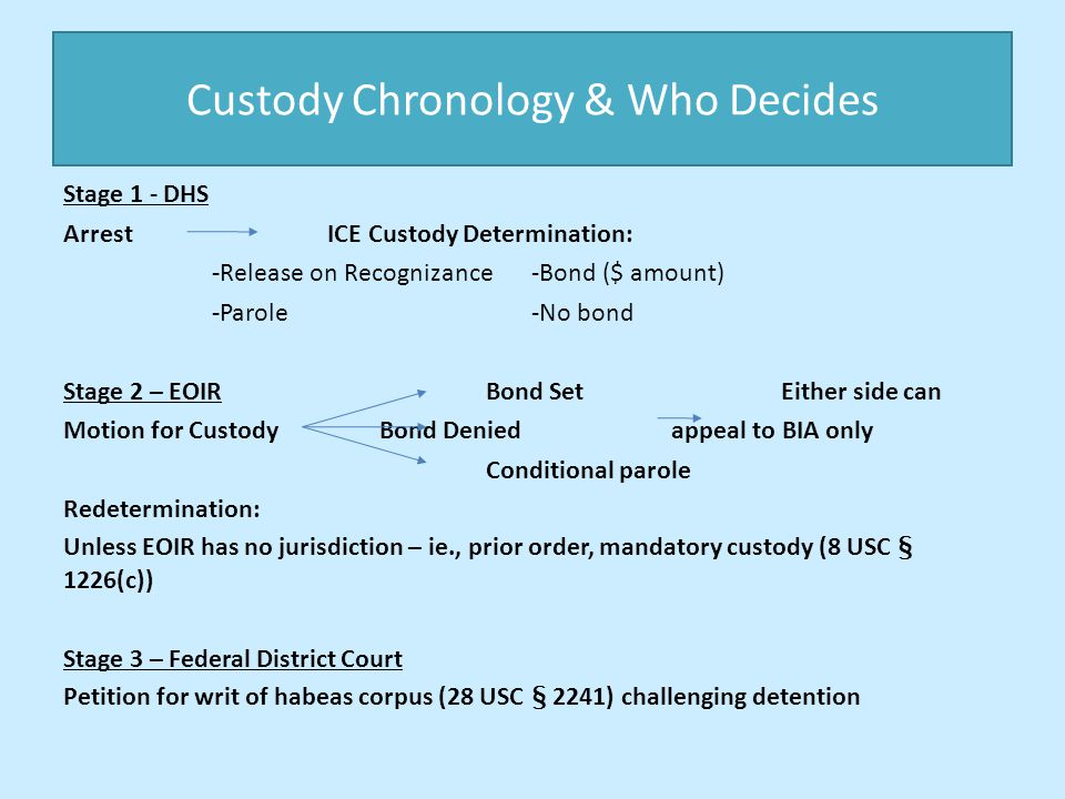 Custody Chronology & Who Decides