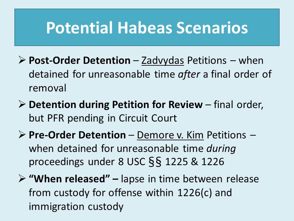 Potential Habeas Scenarios