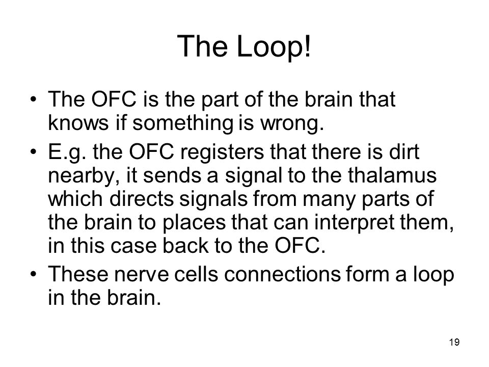 The Loop! The OFC is the part of the brain that knows if something is wrong.