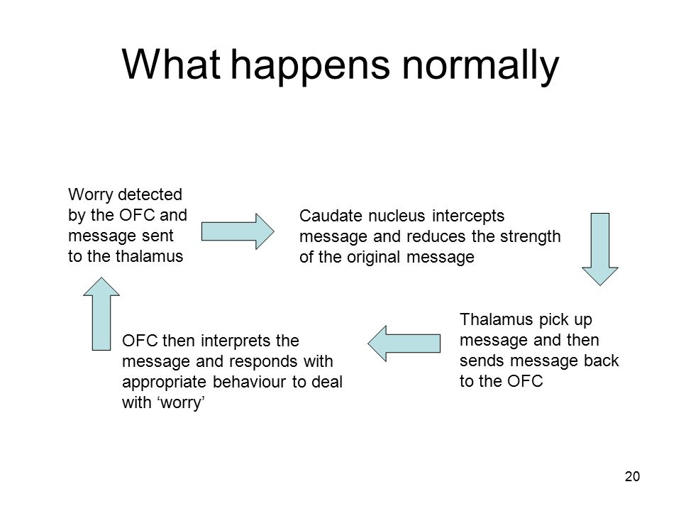 What happens normally Worry detected by the OFC and message sent to the thalamus.