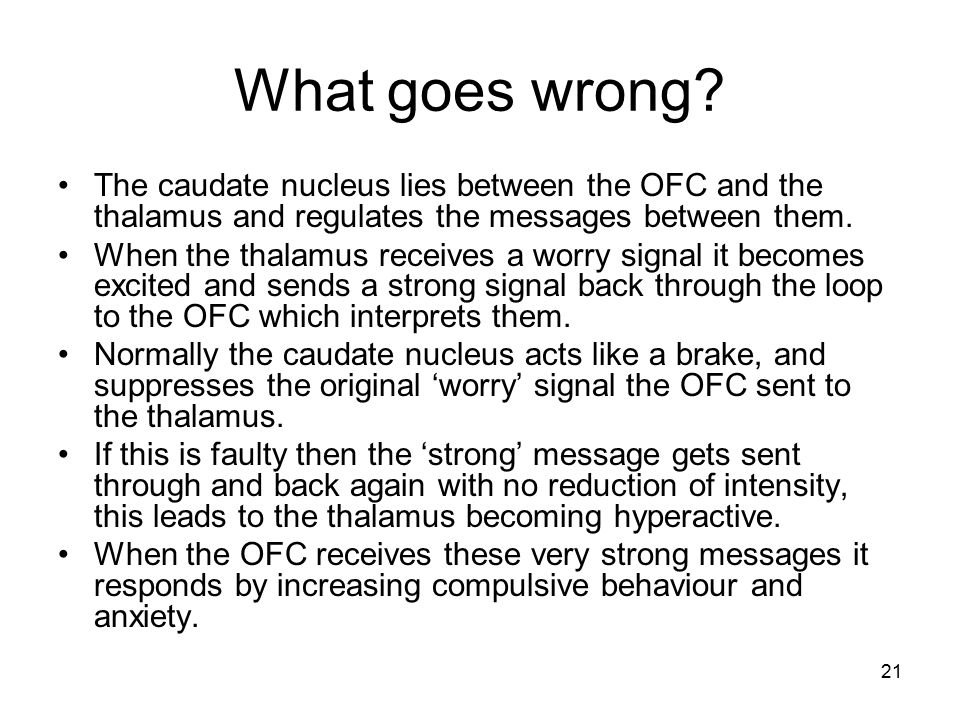 What goes wrong The caudate nucleus lies between the OFC and the thalamus and regulates the messages between them.