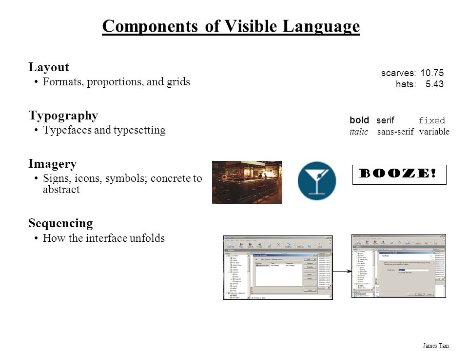 Components of Visible Language