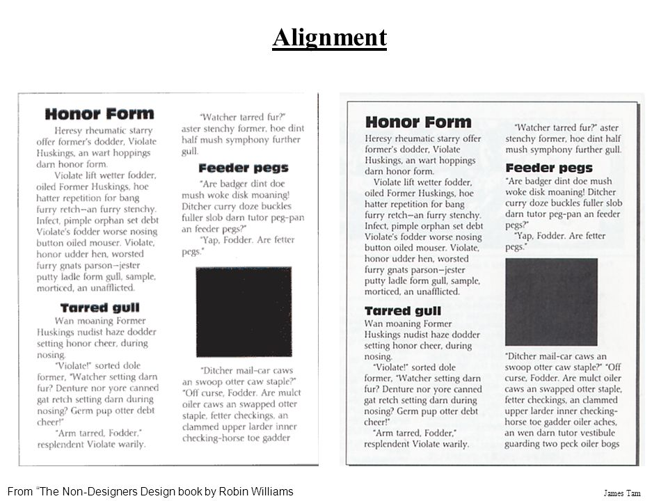 Alignment From The Non-Designers Design book by Robin Williams