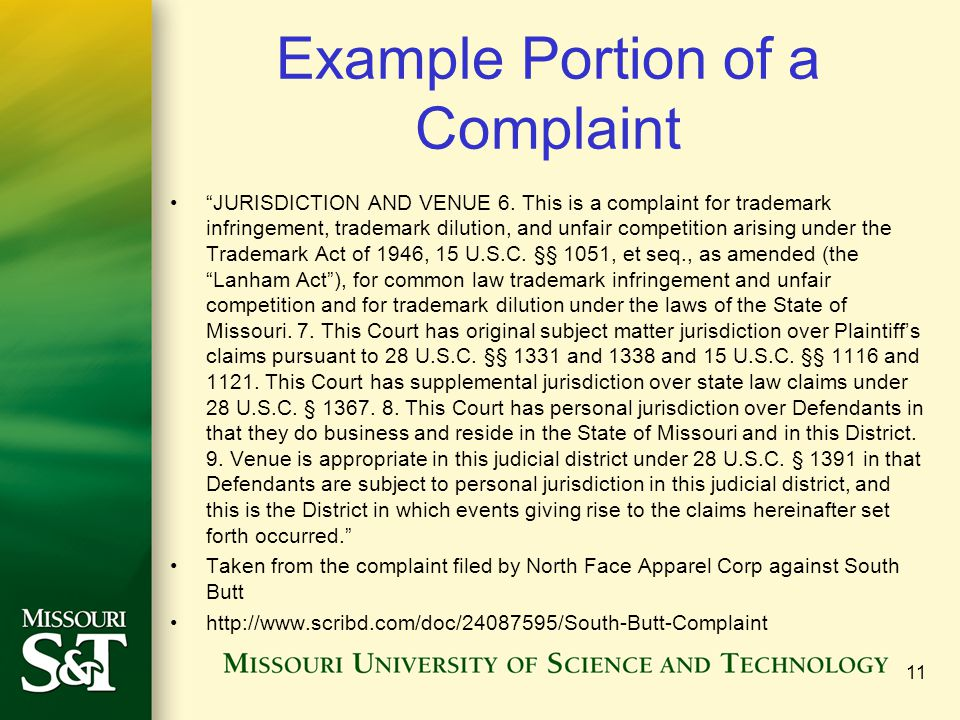 Example Portion of a Complaint