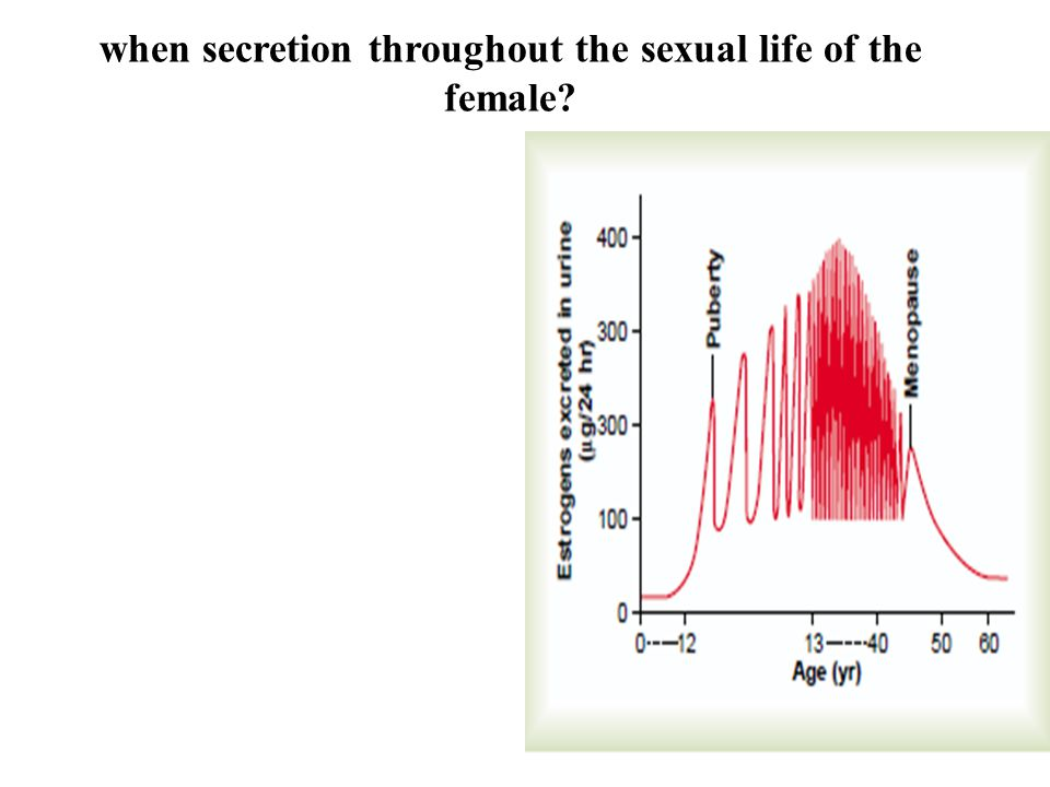 when secretion throughout the sexual life of the female