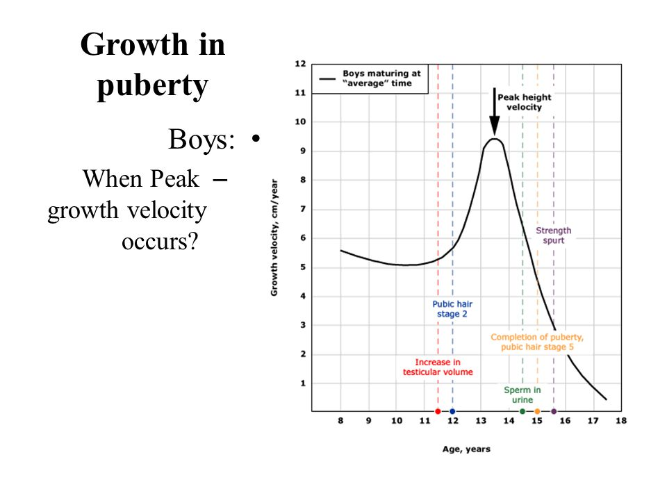 Growth in puberty Boys: When Peak growth velocity occurs Boys: