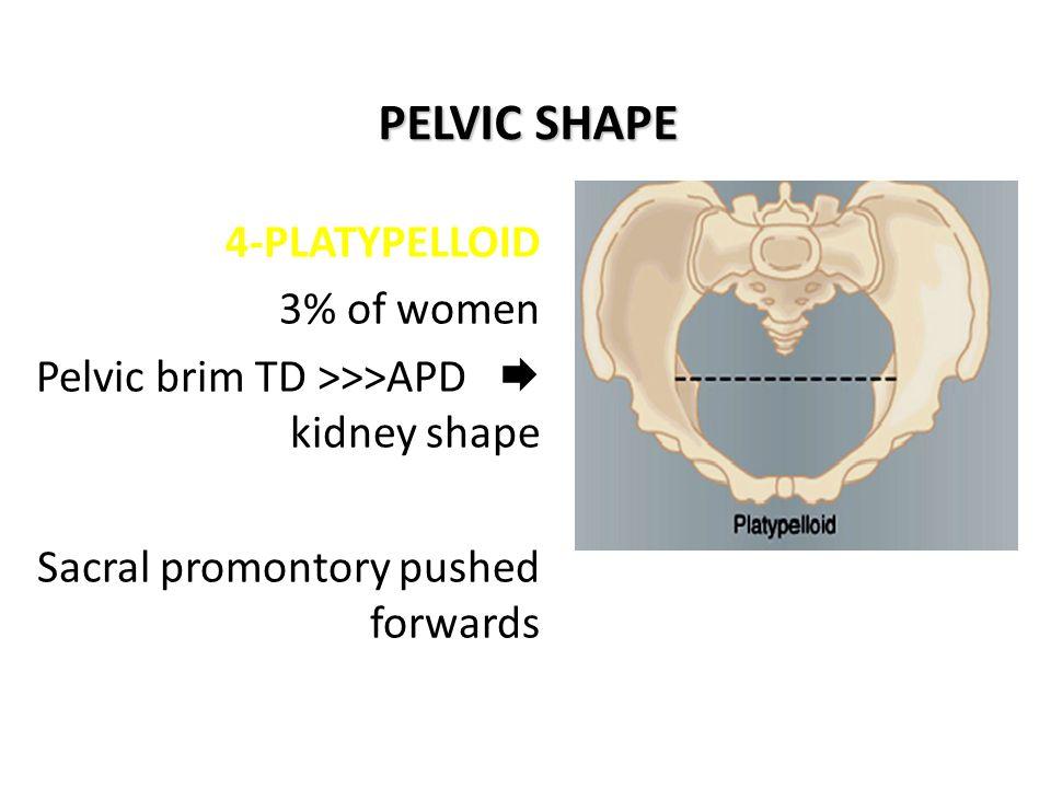 PELVIC SHAPE 4-PLATYPELLOID 3% of women