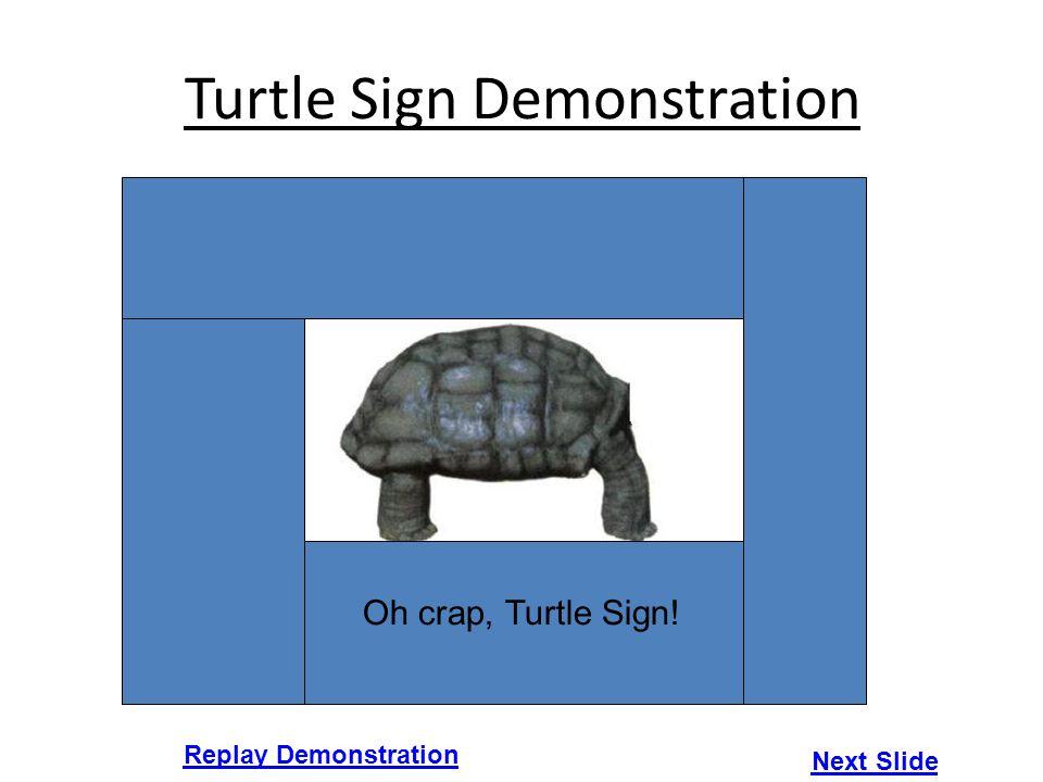 Turtle Sign Demonstration