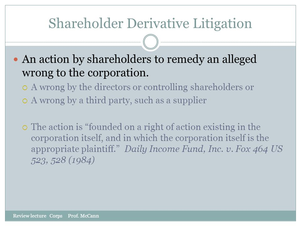 Shareholder Derivative Litigation