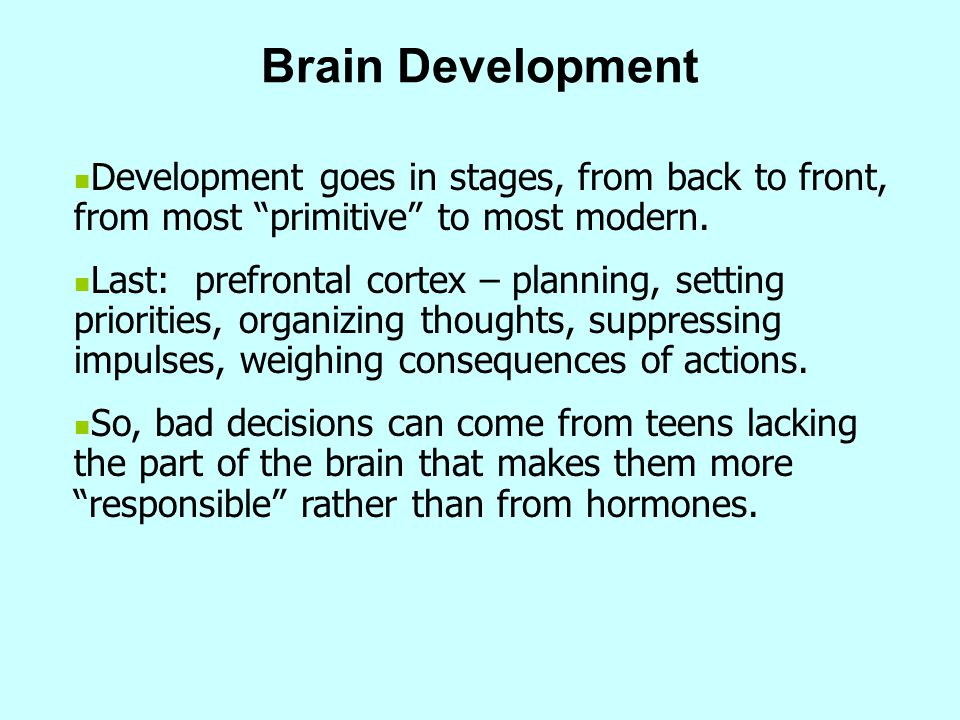 Brain Development Development goes in stages, from back to front, from most primitive to most modern.