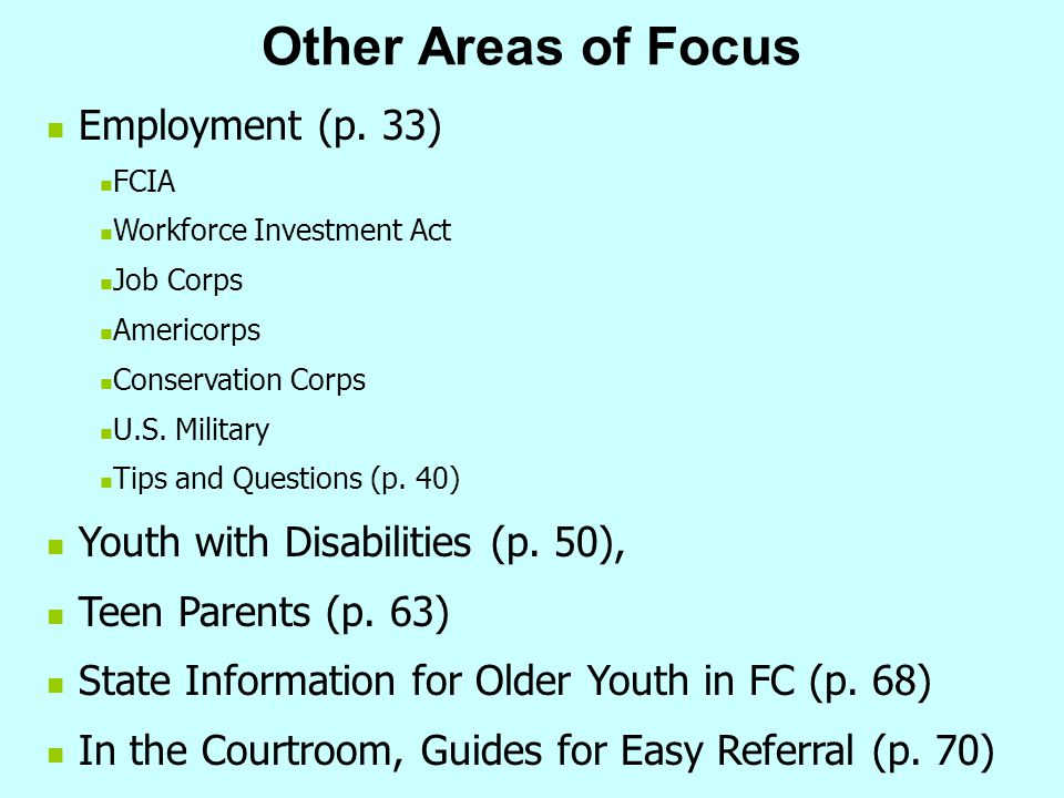 Other Areas of Focus Employment (p. 33)