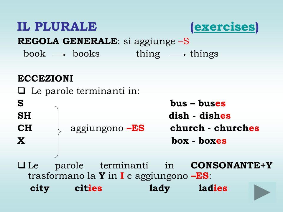 IL PLURALE (exercises)